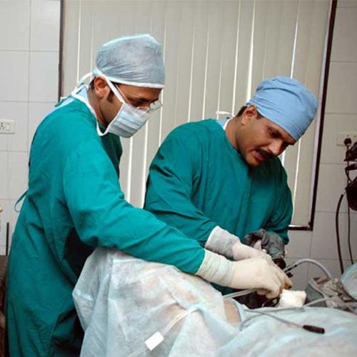 Optical Urethrotomy